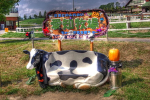 HDR Cowseat